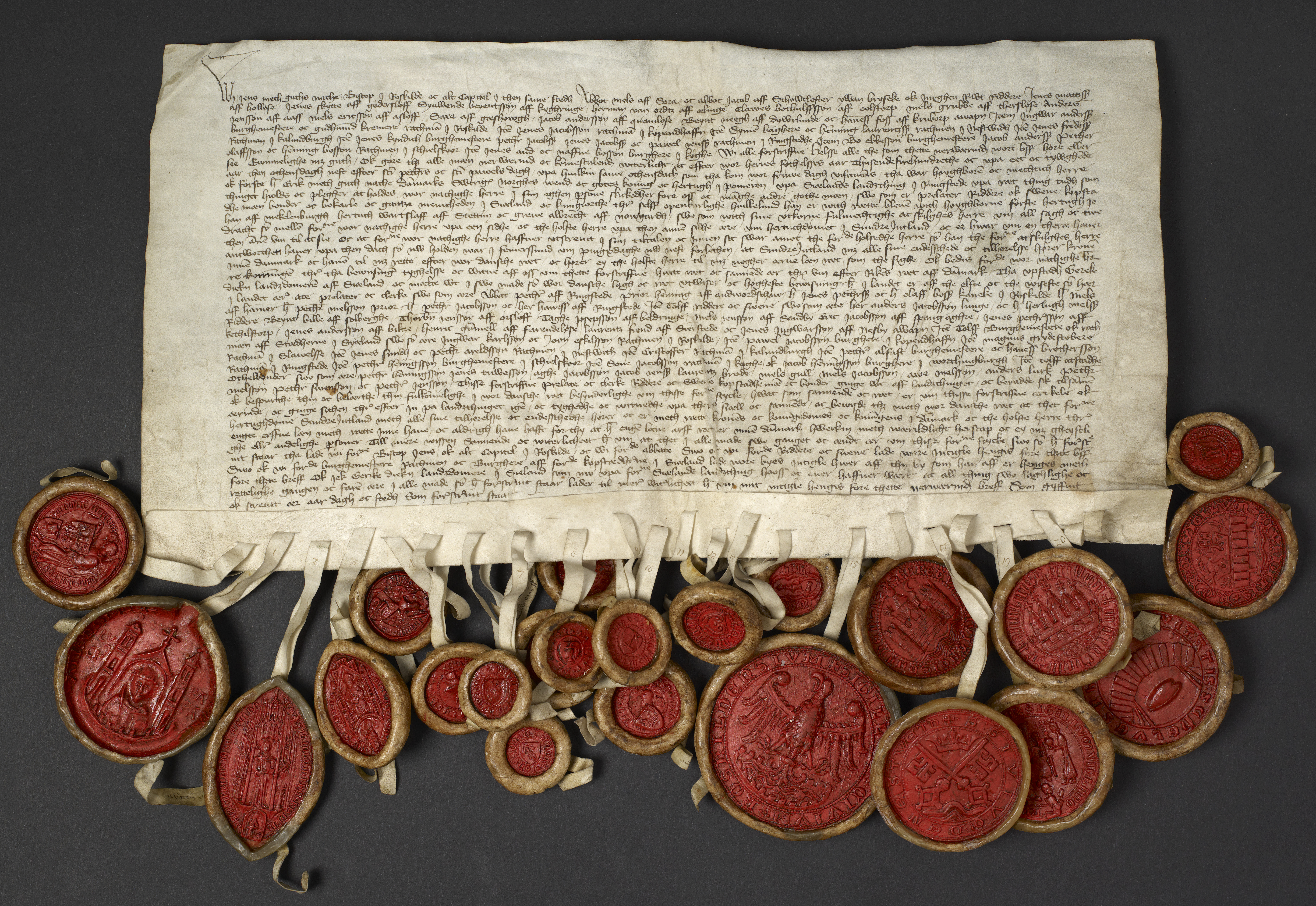 Diplomatarium Danicum opdateret med 207 nygamle dokumenter