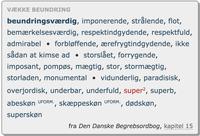Pressemeddelelse: Forrygende eller skæppeskønt? Nyt i Den Danske Ordbog